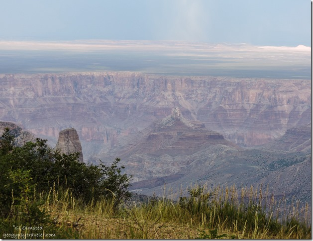 Canyon view from Roosevelt Point North Rim Grand Canyon National Park Arizona