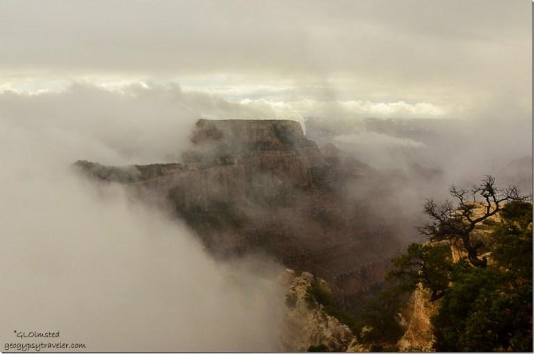 Fog shrouded Wotans Throne Cape Royal North Rim Grand Canyon National Park Arizona