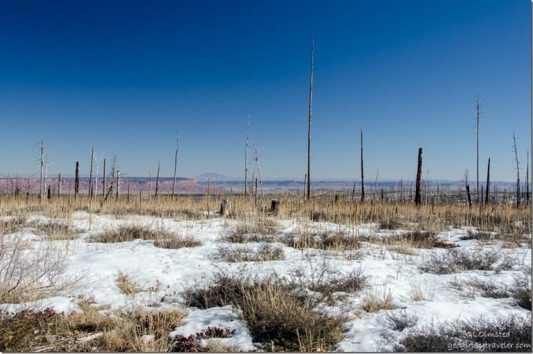 Snow 2006 Warm Fire Paria Plateau & Navajo Mountain SR67 Kaibab National Forest Arizona