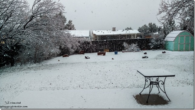 Snowing Bill's backyard Kanab Utah