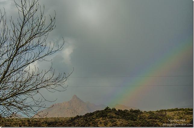 Rainbow Kirkland Arizona