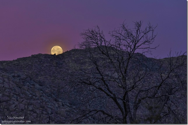 Moon set Yarnell Arizona