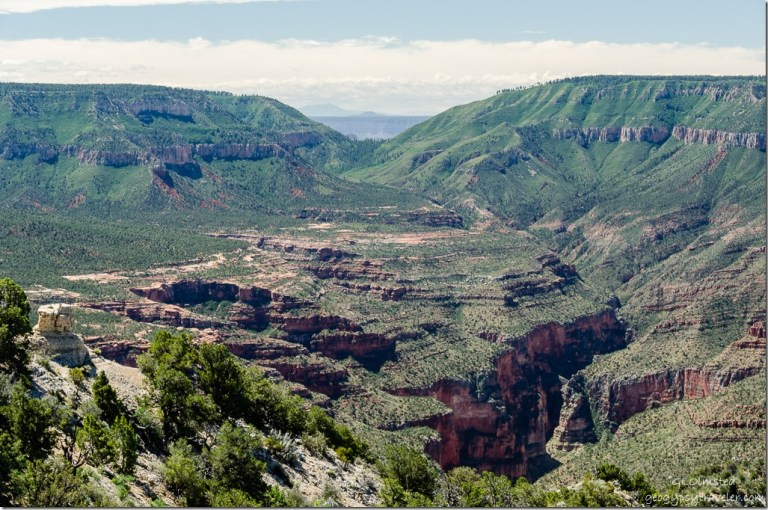 View South Crazy Jug Pt Kaibab National Forest Arizona