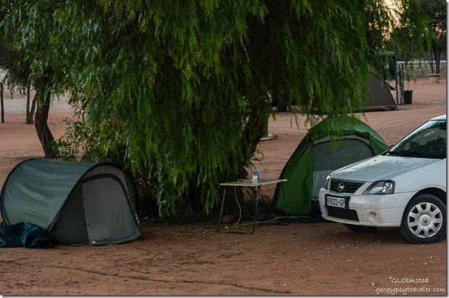 Twee Rivieren camp Kgalagadi Transfrontier Park South Africa