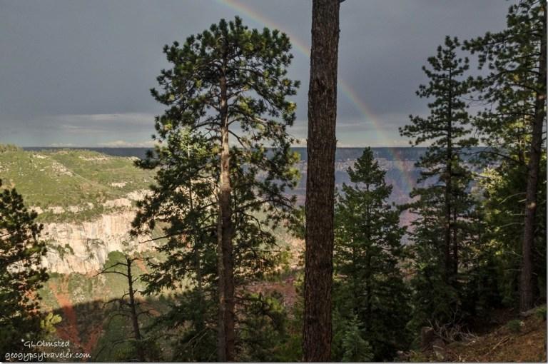 Rainbow over Roaring Springs Canyon North Rim Grand Canyon National Park Arizona