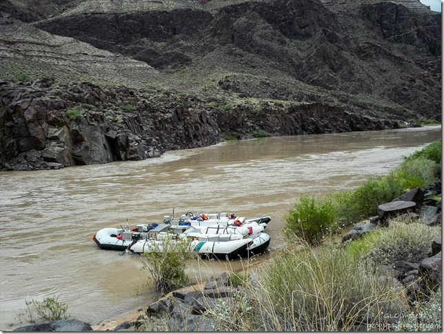 Rafts tied by The Ross Wheeler ~RM108.4 Colorado River trip Grand Canyon National Park Arizona