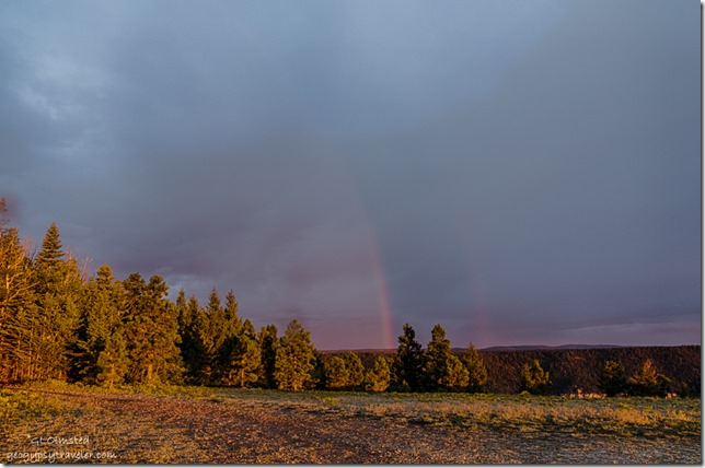rainbow Marble View Kaibab National Forest Arizona