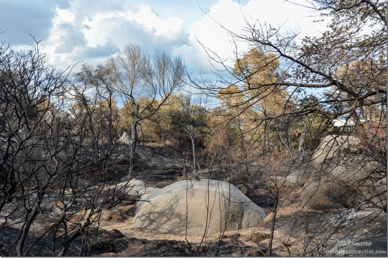 Natural sculpture on boulder in burnt wash Yarnell Arizona