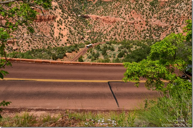 Cars on curvy road below Zion National Park Utah