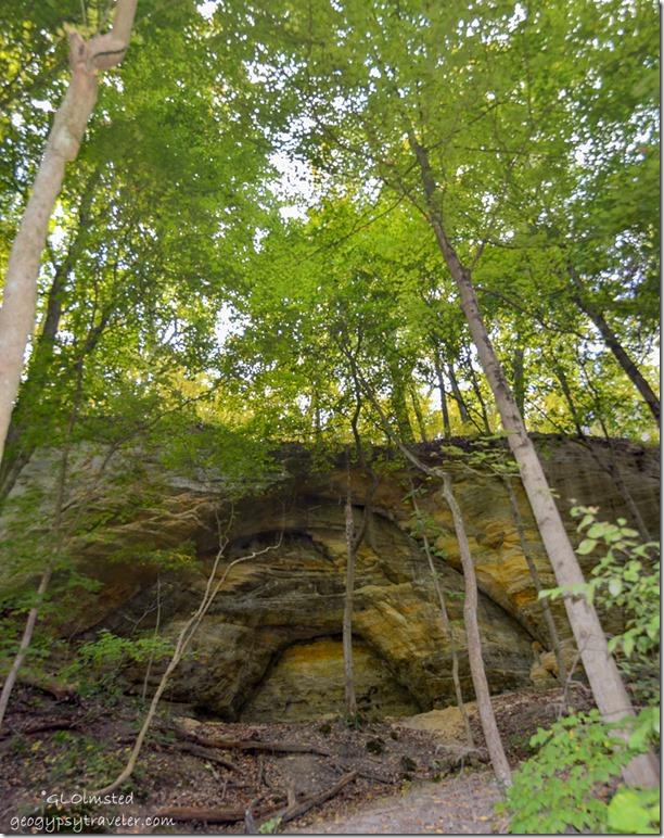 Sandstone bluff along Kaskaskia trail Starve Rock State Park Illinois