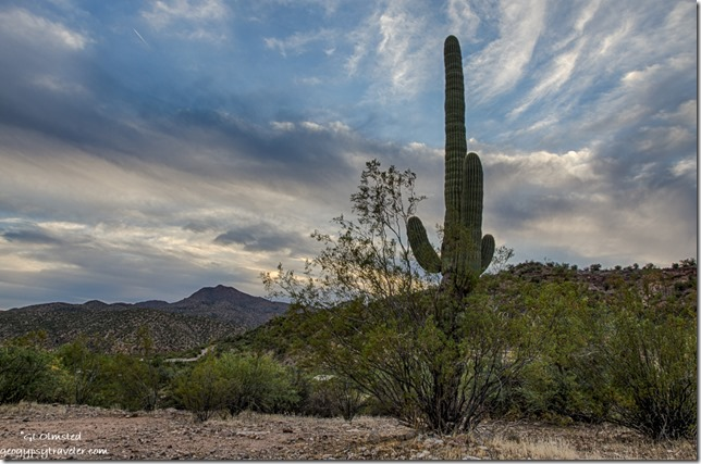 saguaro mountains clouds Burro Creek campground Arizona