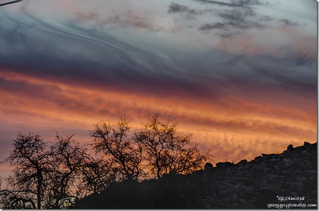 trees Weaver Mountains sunset Yarnell Arizona