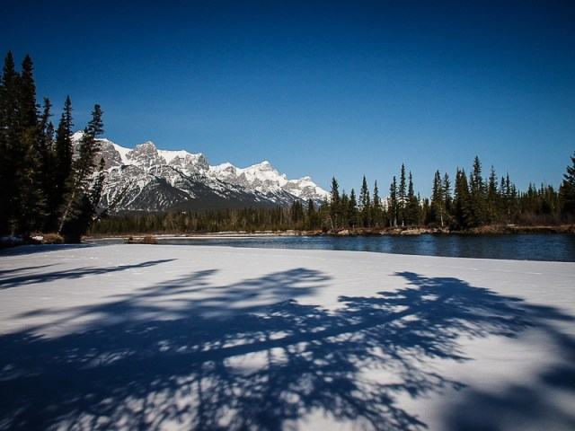 Tree shadows and Mount Rundle
