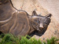 Cougar sculpture - I'd rather encounter this urban artwork than the real thing in the wild