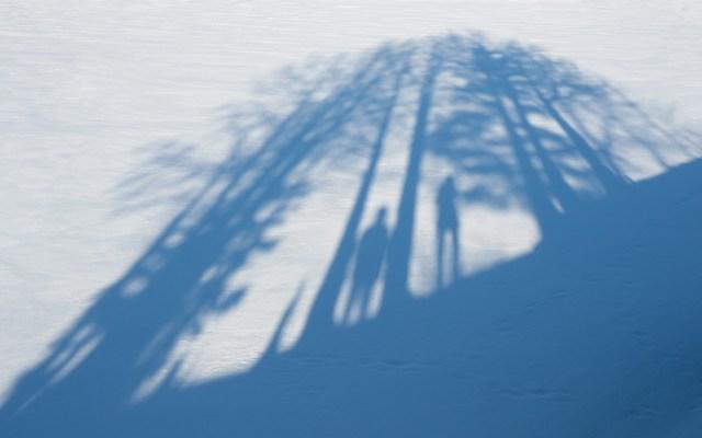 shadows-on-snow
