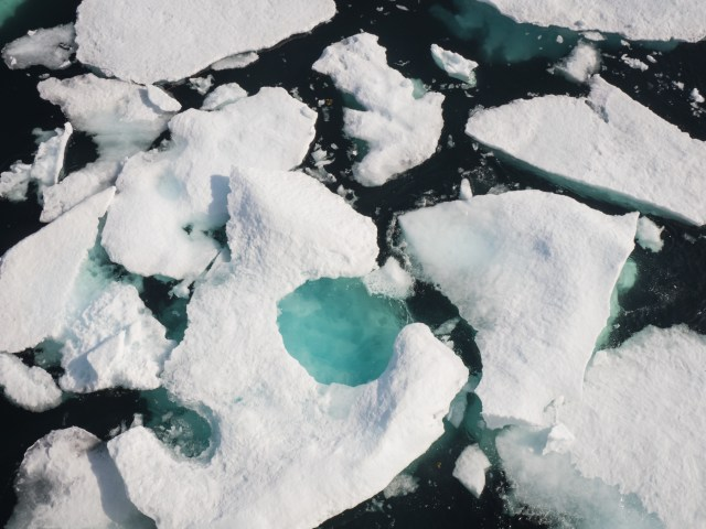 sea-ice-chunks