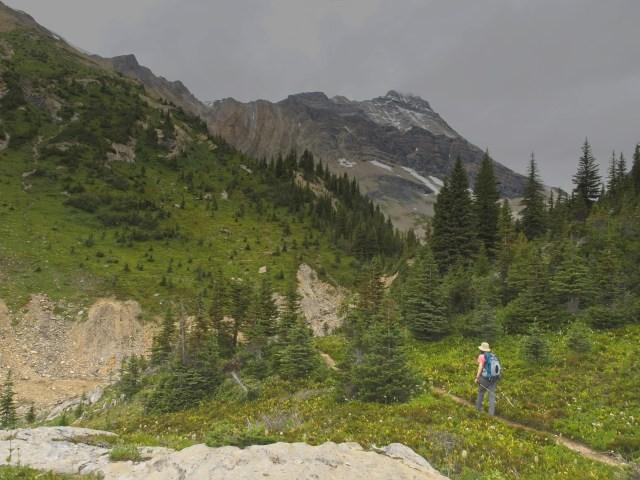 hiker on trail