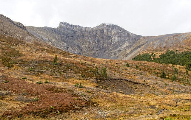 Twisted sedimentary mountain peak in the Palliser Range