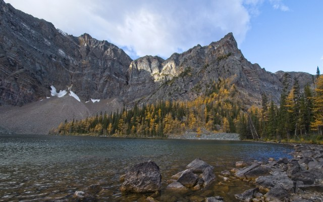 mountain lake and larches