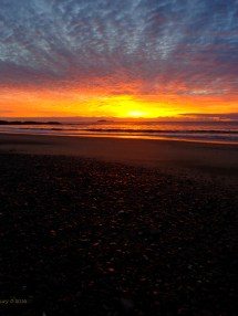 Korora Sunrise 7