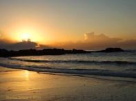 Korora Sunrise Two - 33