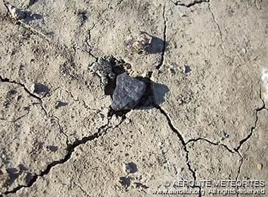 This meteorite was found only six days after it fell to earth. Note how this stone has partially buried itself in the ground, forming a small impact pit. Photograph by Geoffrey Notkin © Aerolite Meteorites.