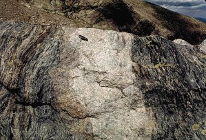 Granite and gneiss in Rocky Mountain National Park.