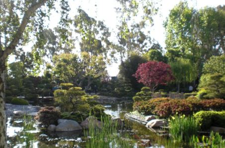 The Hill and Pond Garden