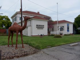 A statue of one of the imported camels, Ayesha in front of the museum. Image from http://www.flickr.com/photos/waltarrrrr/7533428452/