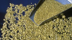 Gold dust. Image from Google Images.