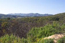 Charmlee Park. Image from Malibu City website.