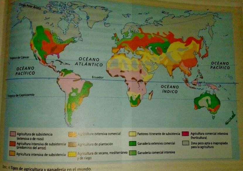 TIPOS DE AGRICULTURA Y GANADERA EN EL MUNDO  Geografa