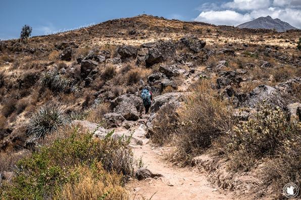 Sentier vers Cabanaconde