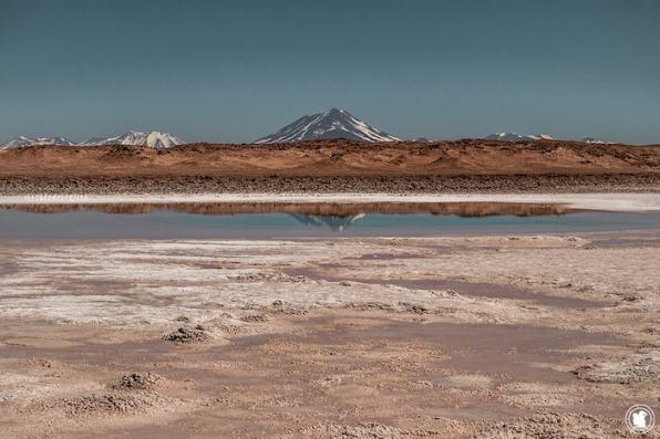 Volcan Socompa depuis les Ojos de Mar