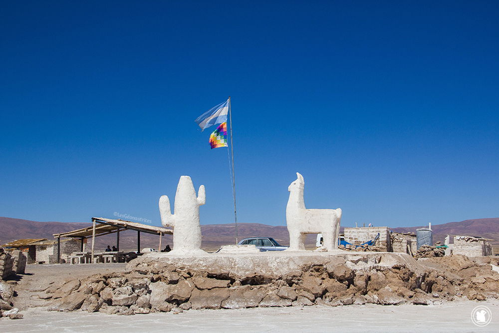 Sculptures de sel - Salinas Grandes - Argentine