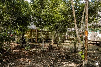 Camp de Jorge, le coin hamac