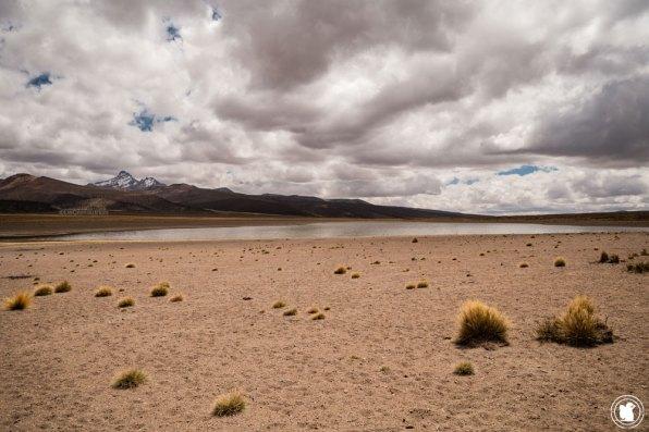 Laguna Huayñacota