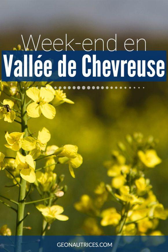 Vous recherchez un lieu pour passer un week-end nature en France pas loin de Paris ? La Vallée de Chevreuse devrait répondre à vos attentes. Je vous partage mon expérience et les choses à voir et faire dans cet article ! #nature #france #evasion