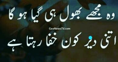Amazing Poetry- Sad Love Poetry in Urdu- Poetry Sad