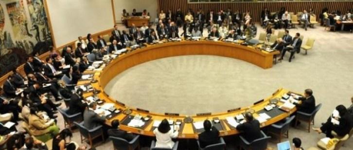Le Criticità Del Consiglio Di Sicurezza Delle Nazioni Unite