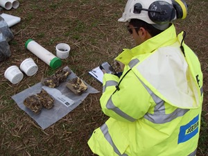Collecting digital data on site makes sharing simpler and faster.