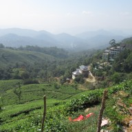View over the plantations, Munnar