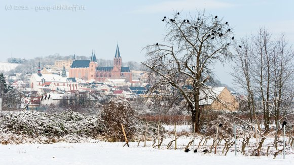 Oppenheim - Bild Nr. 201301248311
