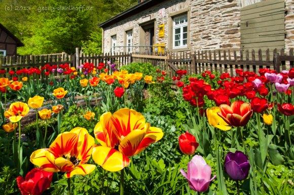 Garten Haus Rapperath, Poststelle - Bild Nr. 201305058741