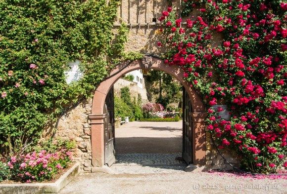 Das Tor zum Rosengarten - Bild Nr. 201306301469