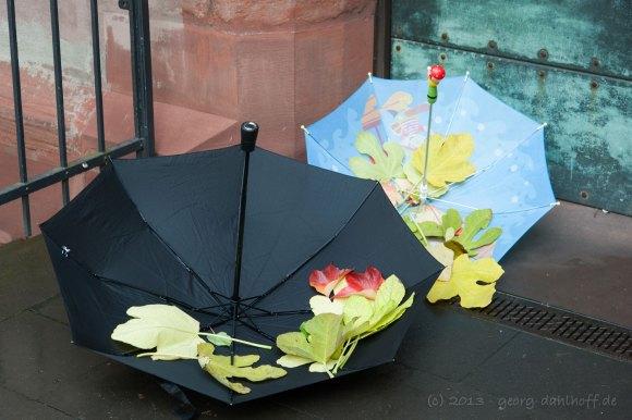 Regenschirme und Blätter - Bild Nr. 201311021613