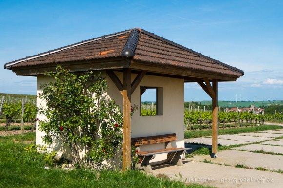 Weinbergshäuschen bei Mommenheim - Bild Nr. 201405170450