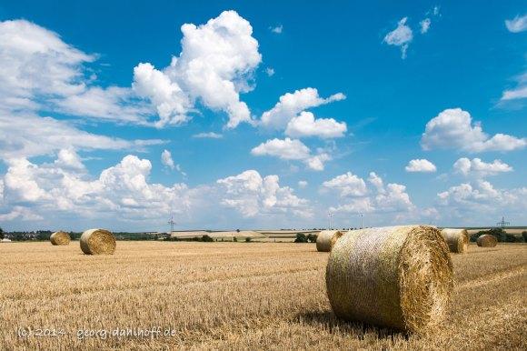 Strohballen - Bild Nr. 201407241026