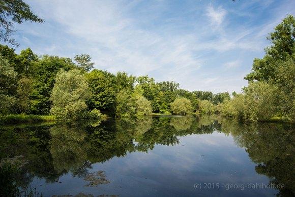 Teich des Angelsportvereins Oppenheim - Bild Nr. 201505144571