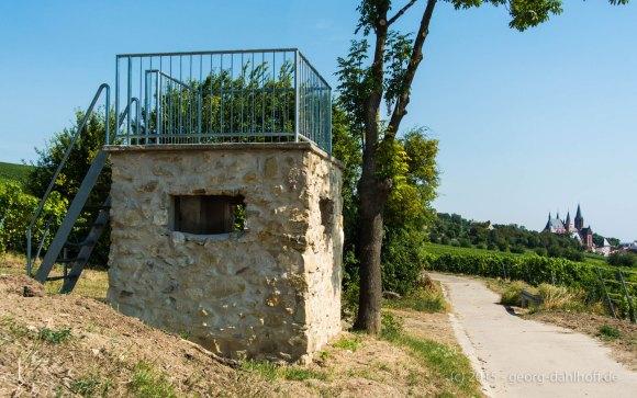 Weinbergsturm bei Oppenheim - Bild Nr. 201508024815